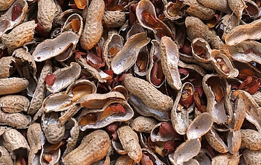 Peanut shells are plentiful and considered as waste