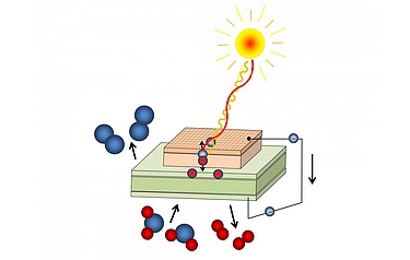 Light creates free charge carriers; oxygen (blue) is pumped through a membrane (illustration: TU Wien)