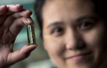 UCI chemist Reginald Penner and doctoral candidate Mya Le Thai (shown) have developed a nanowire-based technology that allows lithium-ion batteries to be recharged hundreds of thousands of times. (Steve Zylius / UCI)