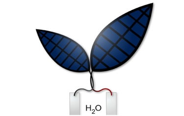 "A new ""bionic leaf"" system uses solar energy to produce liquid fuel (Credit: Jessica Polka/Silver Lab)"