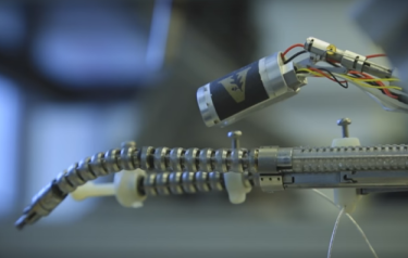 Flexible robot (Credit: Vanderbilt University)
