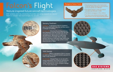 Aircraft technology concepts (Credit: BAE Systems)