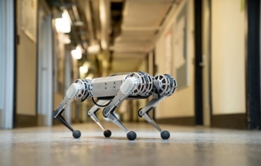 MIT's new mini cheetah robot is springy, light on its feet, and weighs in at just 20 pounds. (Credit: Bryce Vickmark)