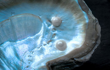 Round, smooth and iridescent, pearls are among the world's most exquisite jewels; now, these gems inspire U.S. Army researchers looking to improve military armor. (Photo Credit: Shutterstock)