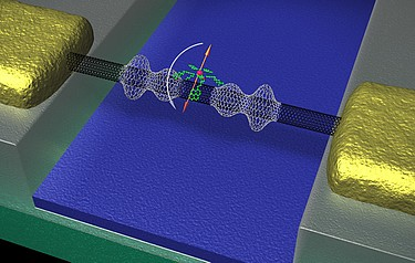 The spin of a molecule (orange) changes and deforms the nanotube (black) mounted between two electrodes (gold) (igure: C. Grupe/KIT)