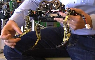 The strengths of this robot reside in the design of its legs. The number of segments – three on each leg – and their proportions are the same as they are on a cat.