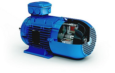 Weg Electric Motors Uk Ltd Modular Eusas Motor Meets