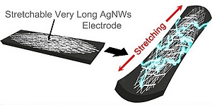 Schematics of hyper-stretchable elastic-composite generator (SEG) enabled by very long silver nanowire-based stretchable electrodes (courtesy of KAIST)